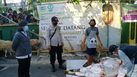 Cegah Penyebaran Covid-19, Kelurahan Notoprajan Lakukan Pemantauan Penyembelihan  Hewan Kurban